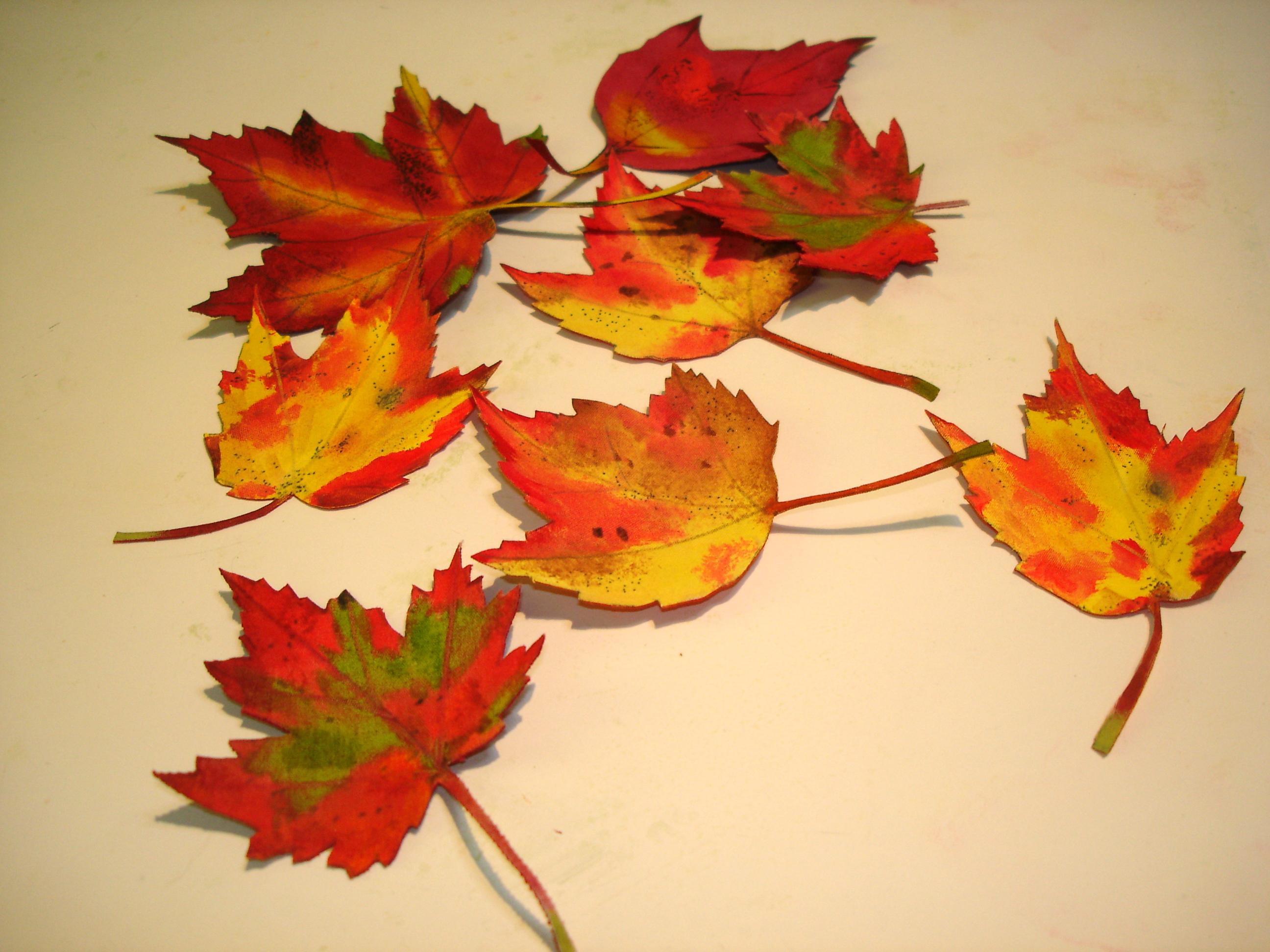 Painting fabric; autumn leaves | janebalshaw creative