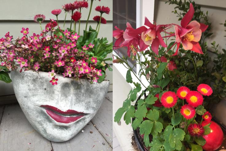 Spring flower planters; janebalshaw.com